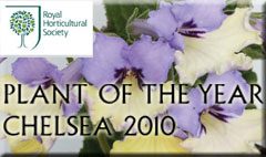 RHS chelsea plant of the year